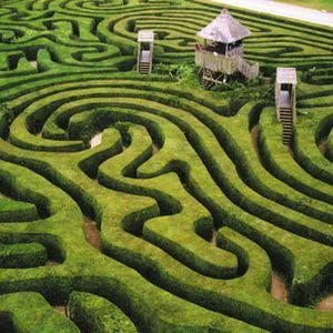 end of Maze mix...