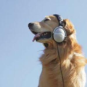 MPI Music Mix 10