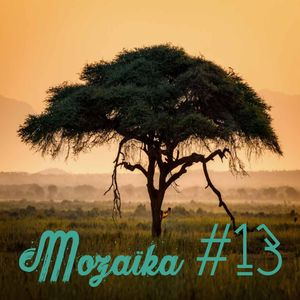 Mozaïka #13