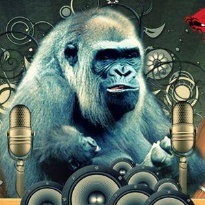 Monkey Dub Recording Promo Mix March 2010