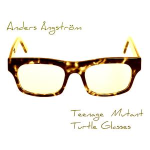 Teenage Mutant Turtle Glasses