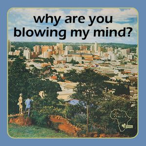 """""""Why Are You Blowing My Mind?"""" :: Southern Africa Fuzz Funk Fishing Mission 1966-1982"""
