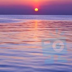 Chelesea sunse gold request show  11/8/16