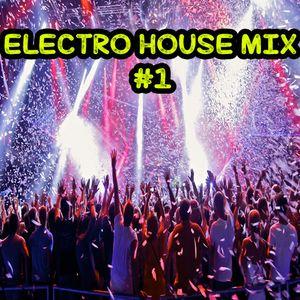 Electro House Mix #1 ( Dj B34TSKULL )
