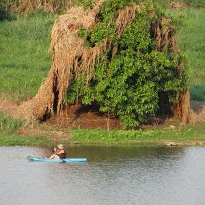 Conexão Amazônia #04