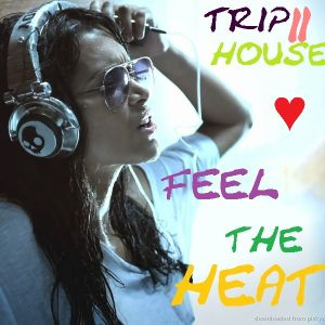 trip2house - Feel The Heat