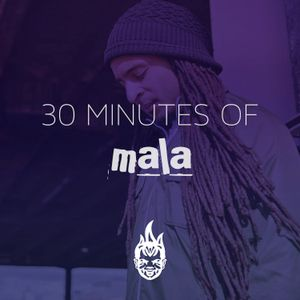 30 Minutes of Bass Education #5 - Mala