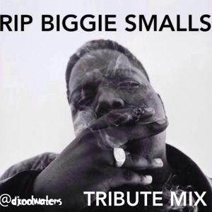 Biggie Smalls Tribute
