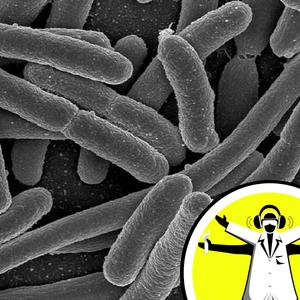 Stopping Superbugs