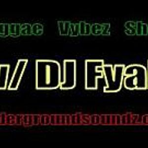 Reggae Vybez Show w/ DJ Fyah ft. Mr Curtiz Melody, 16-8-13 @ USZ Studio