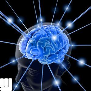 MarkuS deLucca - SET Brain Brilliant Blue