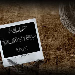 Heavy Dubstep Mix 2010 WillP