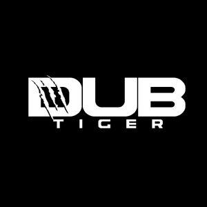 Dub Tiger at Kremlin_23.07.2016