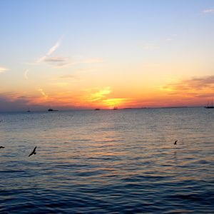 Ian Blofeld-Return to Sunset Key