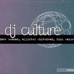 Dj Culture Allister Whitehead 1995