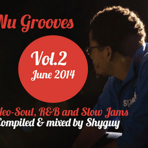 Nu Soul Vol.2: Neo-Soul, R&B and slow jams