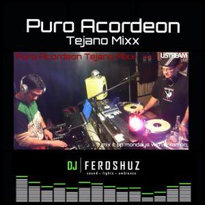 PURO ACORDEON TEJANO MIXX