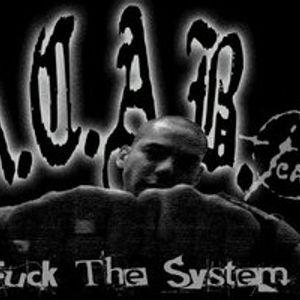 NOVEMBAR.05.2012.   A.C.A.B.