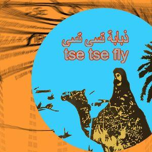 Tse Tse Fly Middle East - Live at IKLECTIK - Thursday 23rd November 2017