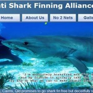 Shark fin soup has to go - in conversation with Mick Dowes from TAASFA