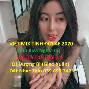 ʚɞ [Việt Mix] Tình Đời AE 2020丶 Tình Xưa Nghĩa Cũ & Đời Là Thế Thôi 2 ► DJ Dượng Bi (Giao Xuân)