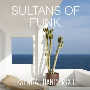 Sultans Of Funk - Essential Dance Mix 16