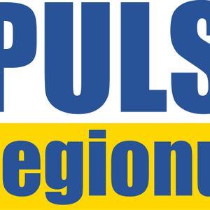 Puls Regionu 03-06-2014