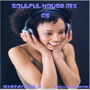 NIGEL B (SOULFUL HOUSE MIX 05)
