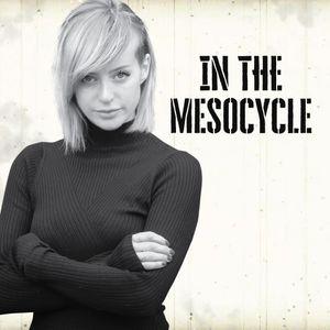 Mesocycle Vol. 2 - ILona Maras