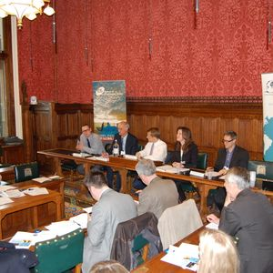 Future and feasibility of SDGs: IDS and ODI joint event in Westminster, 8 May 2012