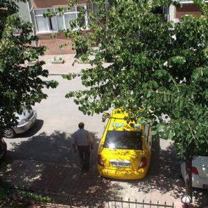 Bir ticari taksi hatırasıdır