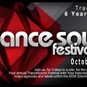 Akku - TranceSound Festival 2011