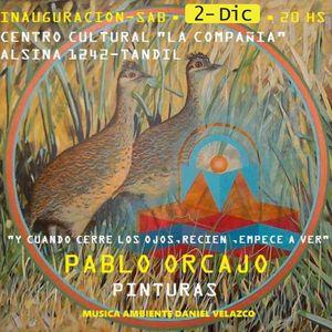 """En """"La entrevista de los viernes"""" Pablo Orcajo, artista.""""Pinturas"""" (sáb 2-12 20hs Alsina 1242)."""