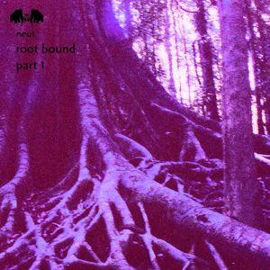 Root Bound - Part 1