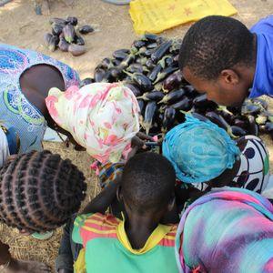 Burkina Faso paese di frontiera - Mito, realtà e futuro della cooperazione