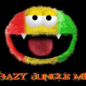 FreeNoiseX - Crazy Jungle Mix