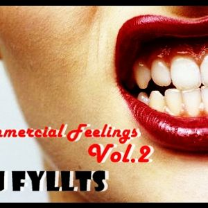"""Commercial Feelings Vol.2 """"Birthday Gift"""" Mixed By Dj Fyllts"""