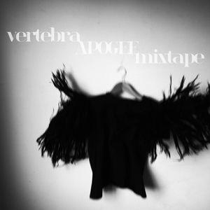Vertebra APOGEE mixtape