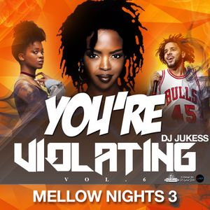 You're Violating Vol.6 - Mellow Nights Pt.3