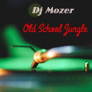 Old School Jungle - Dj Mozer