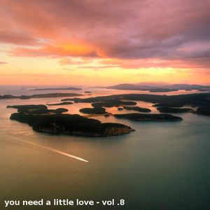 You need a little love - Vol. 8