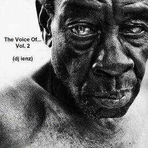 The Voice Of...Vol. 2 (dj ienz)