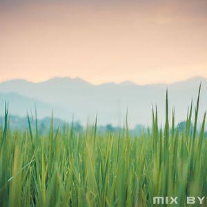 Emaus - The Greener Grass