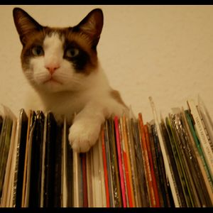 Sr CatBeat presents; a Ska, RockSteady & Soul session