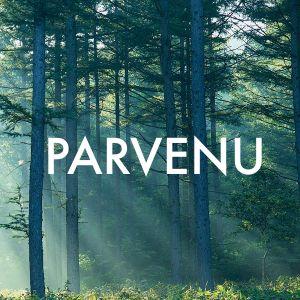 PARVENU//Deep House Mix