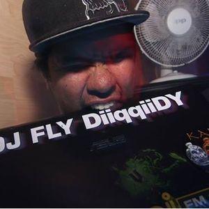 DJ Fly DiiqqiiDY - 2014 March Promo mix