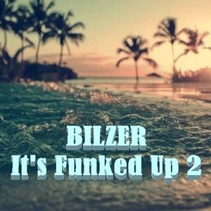 It's Funked Up 2