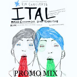 Lemon Cat + Concepto Radio presents ITAL (PROMO MIX)