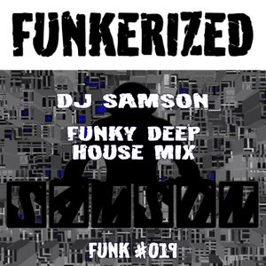 DJ Samson - Funkerized (#019)