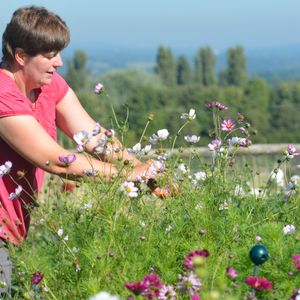 Around Surrey with Claire Brown from Plantpassion